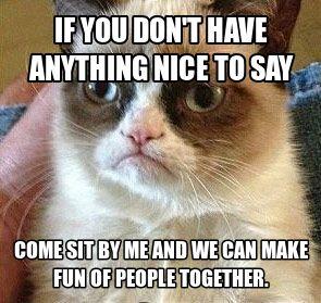 Grumpy Cat, the grumpiest of cats.